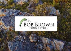 bobbrown-prezi